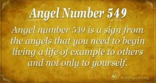 Angel Number 549