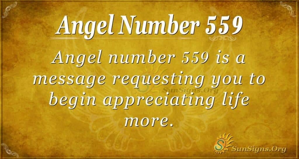 angel number 559