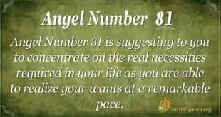Angel Number 81