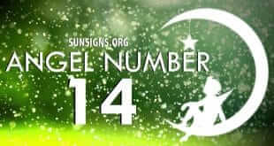 Angel Numbers Mixed Sequence 1 And 4