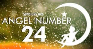 Angel Numbers Mixed Sequence 2 And 4