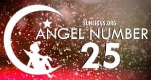 Angel Numbers Mixed Sequence 2 And 5
