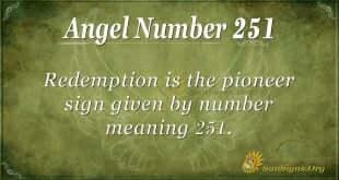 Angel Number 251