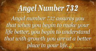Angel Number 732