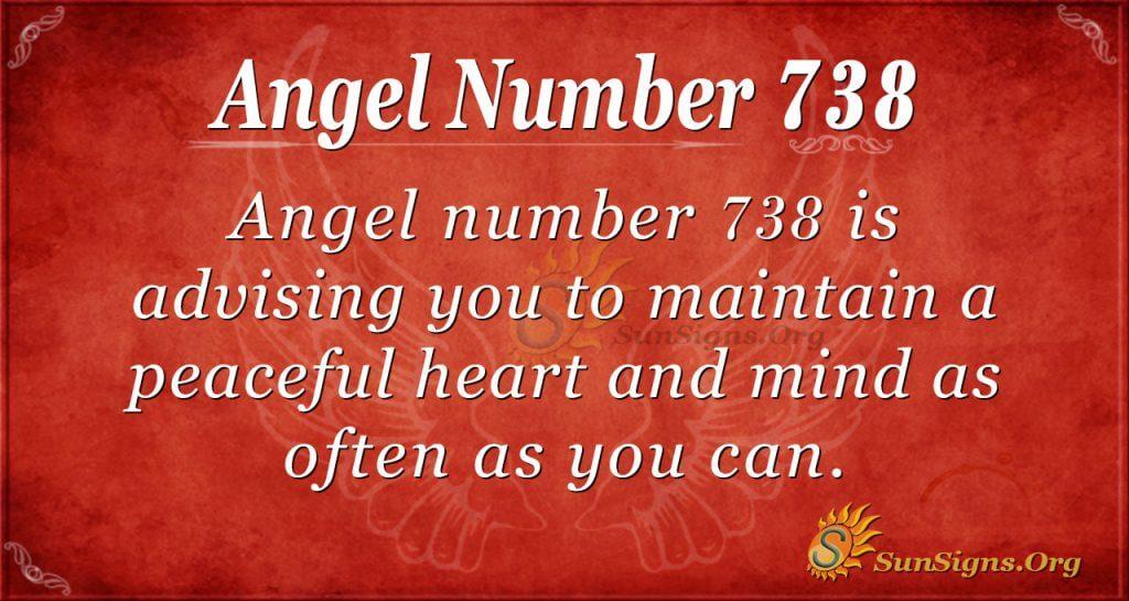 Angel Number 738