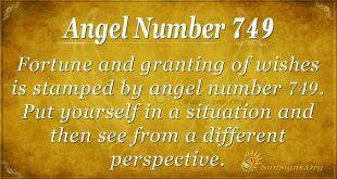 Angel Number 749