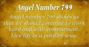 Angel Number 799