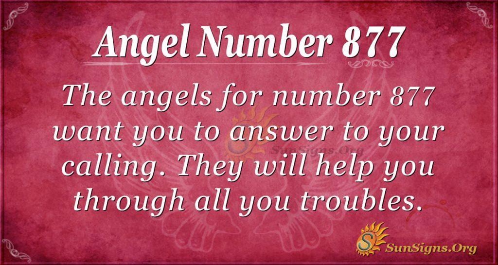 angel number 877