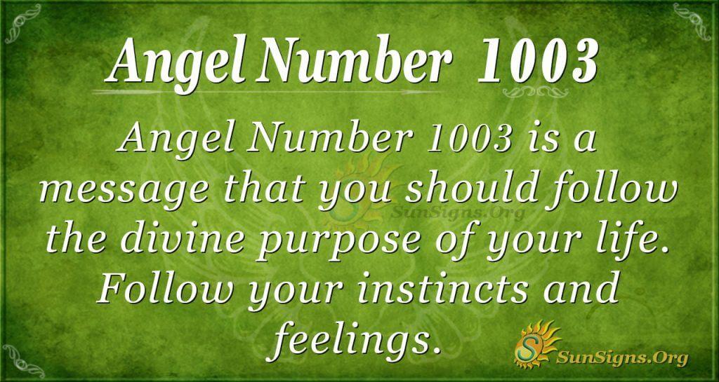 angel number 1003