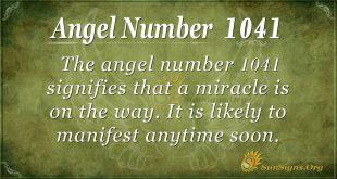 angel number 1041