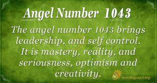 angel number 1043
