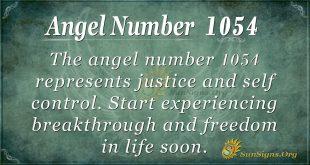angel number 1054