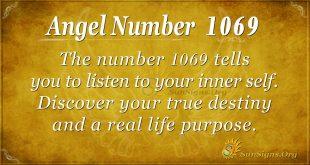 angel number 1069
