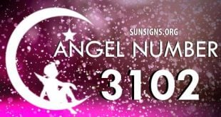 angel number 3102