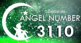 angel number 3110