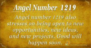 angel number 1219