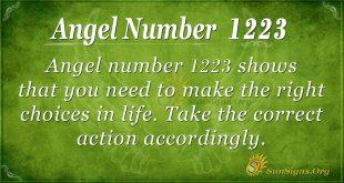 angel number 1223