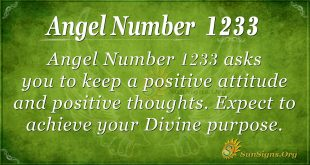 angel number 1233