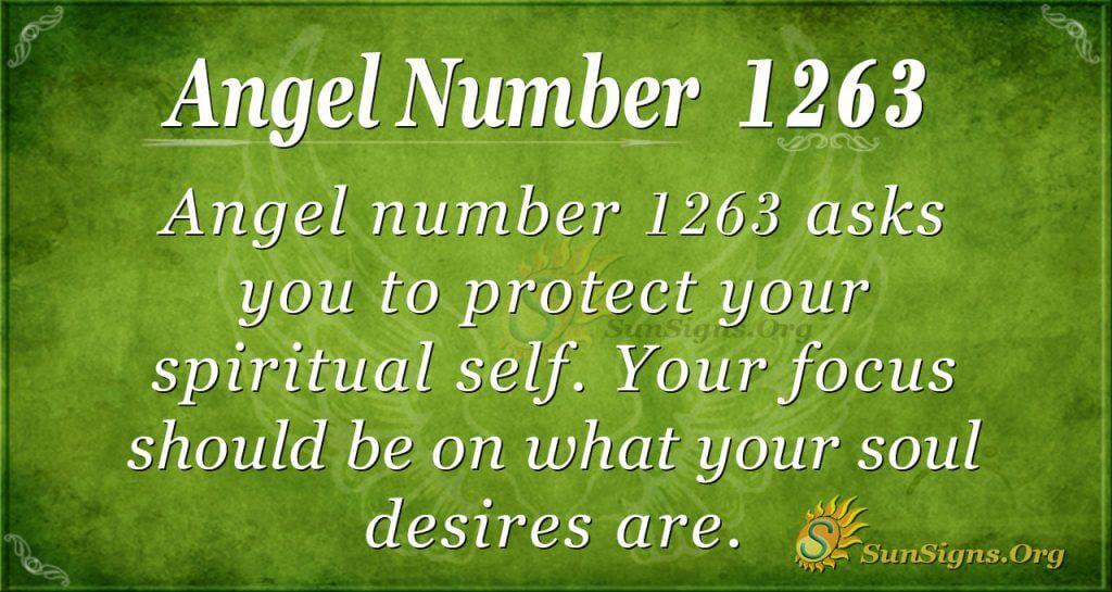 angel number 1263