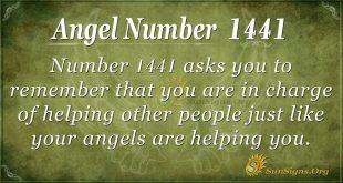 Angel Number 1441