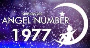 angel number 1977