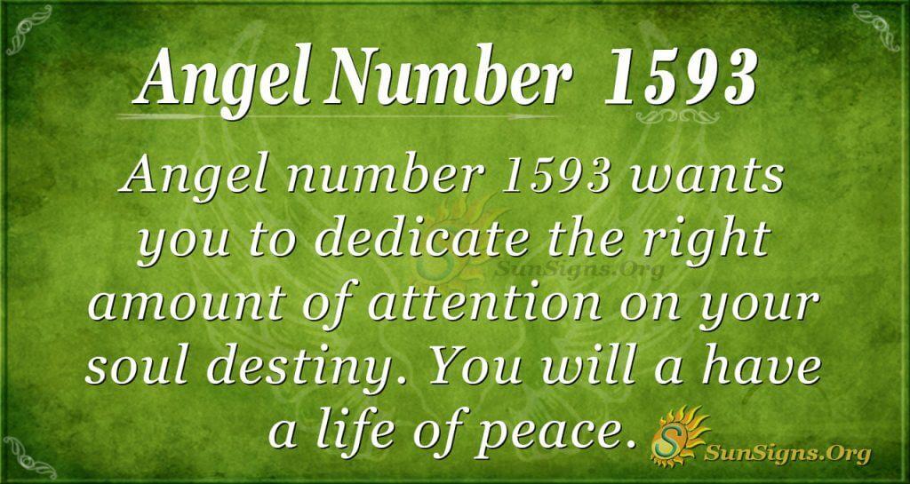 Angel Number 1593