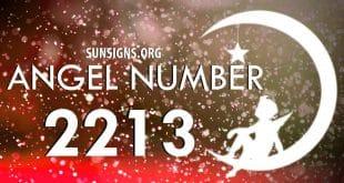 angel number 2213