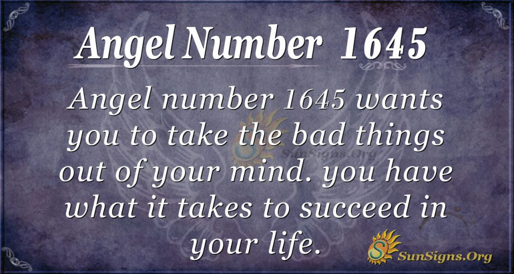 Angel Number 1645