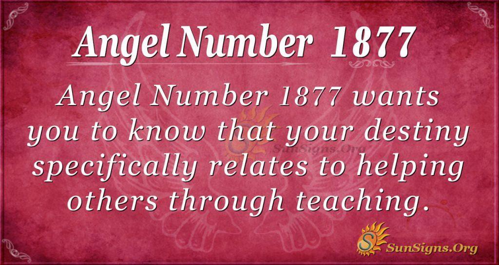 Angel Number 1877