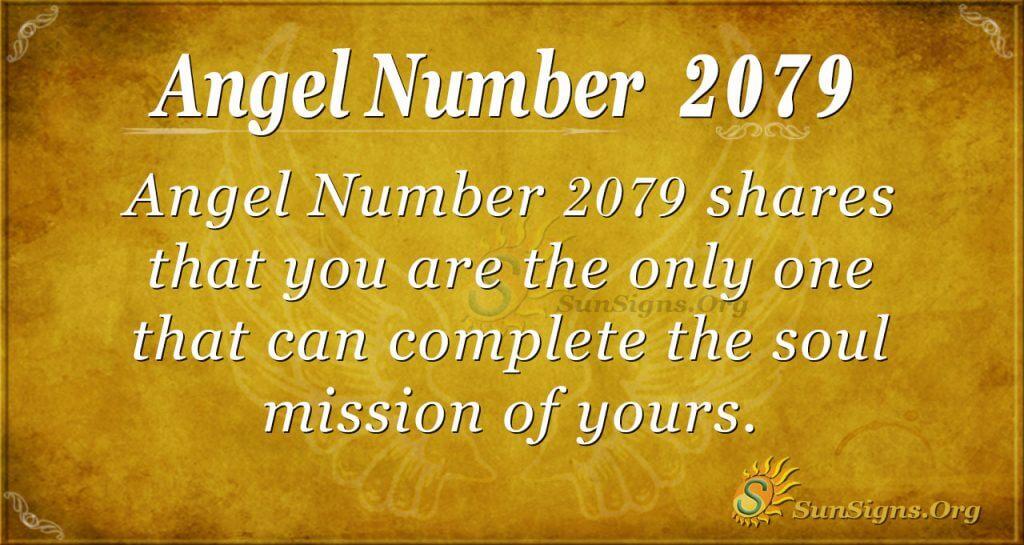 Angel Number 2079