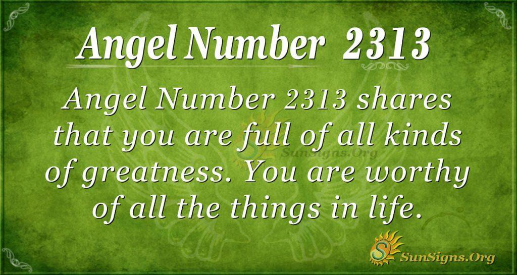 Angel number 2313