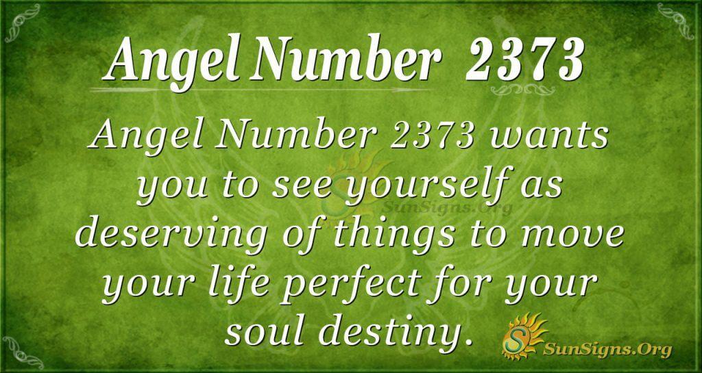 Angel number 2373