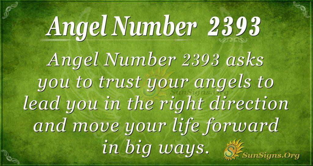 Angel number 2393