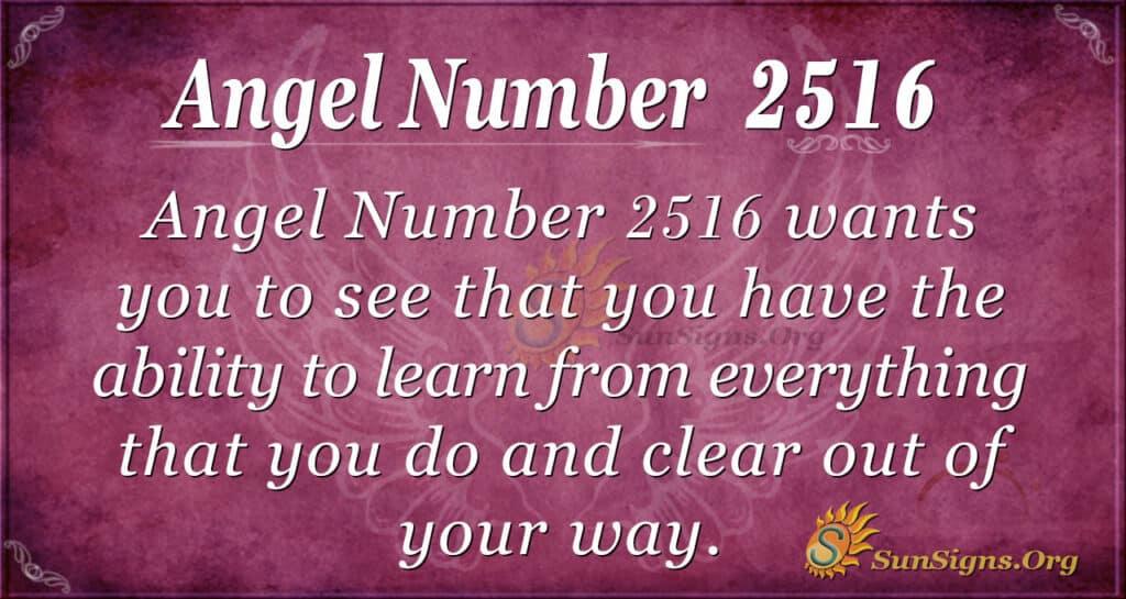angel number 2516