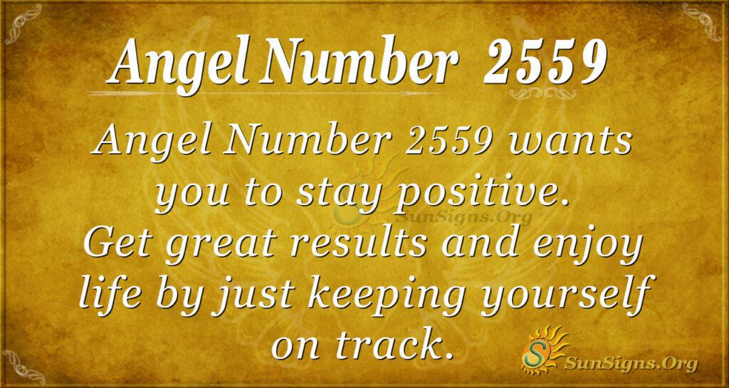 Angel Number 2559