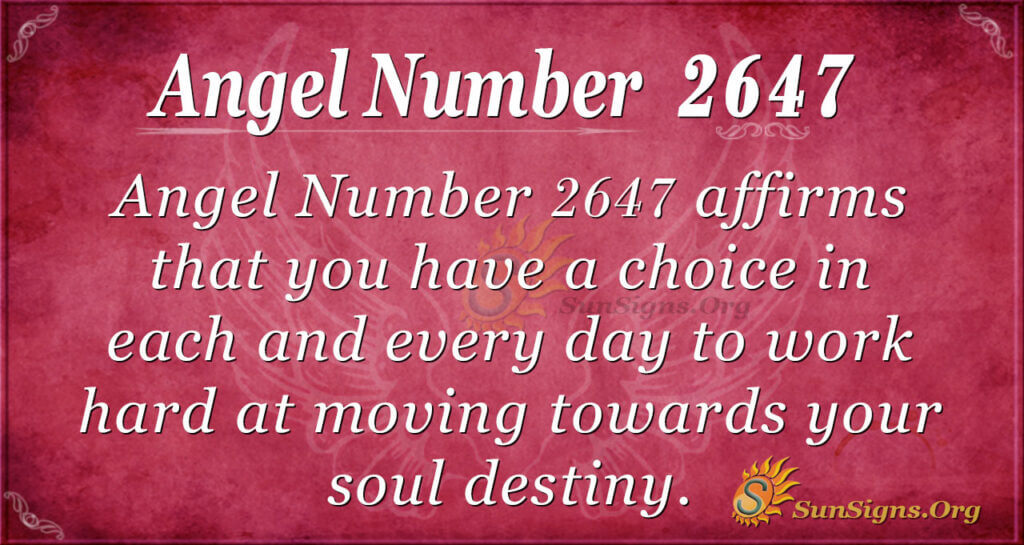 Angel Number 2647