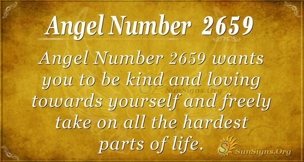 Angel Number 2659