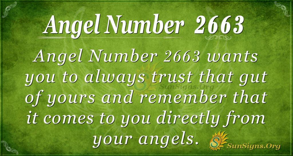 Angel Number 2663