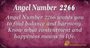angel number 2266