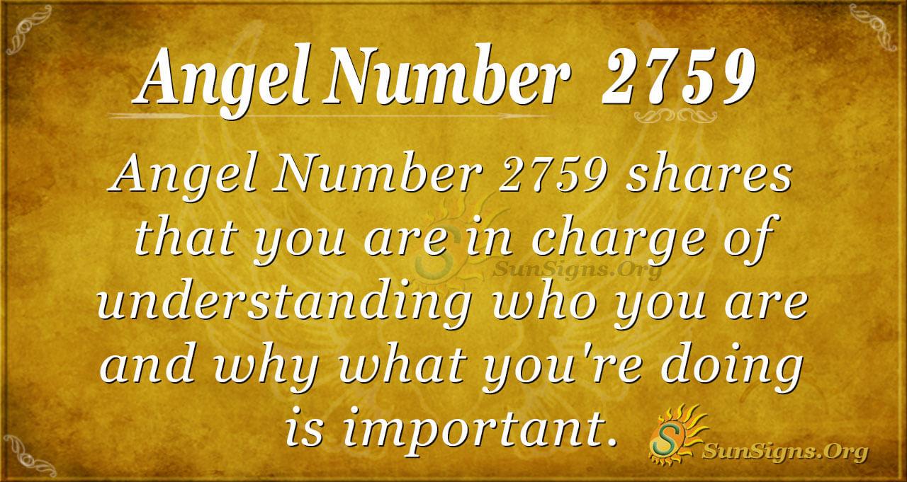 Brojimo u slikama - Page 31 2759_angel_number