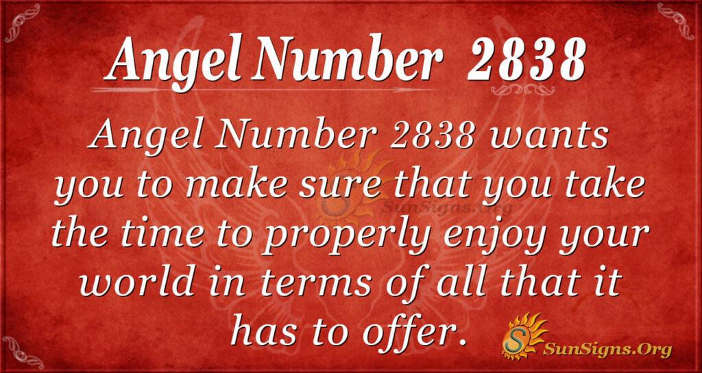 Angel Number 2838