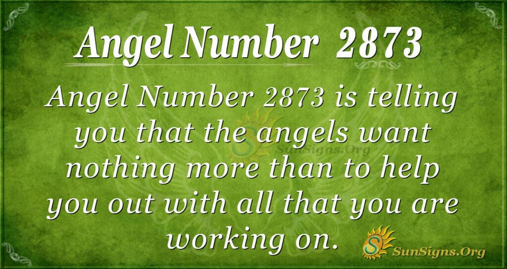 Angel Number 2873