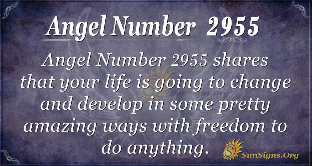 Angel Number 2955