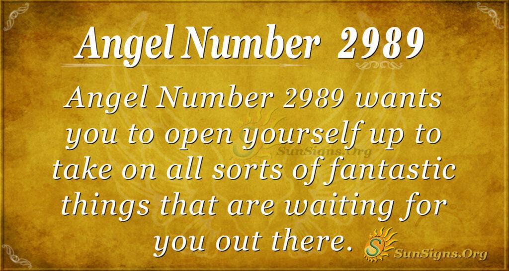 Angel Number 2989
