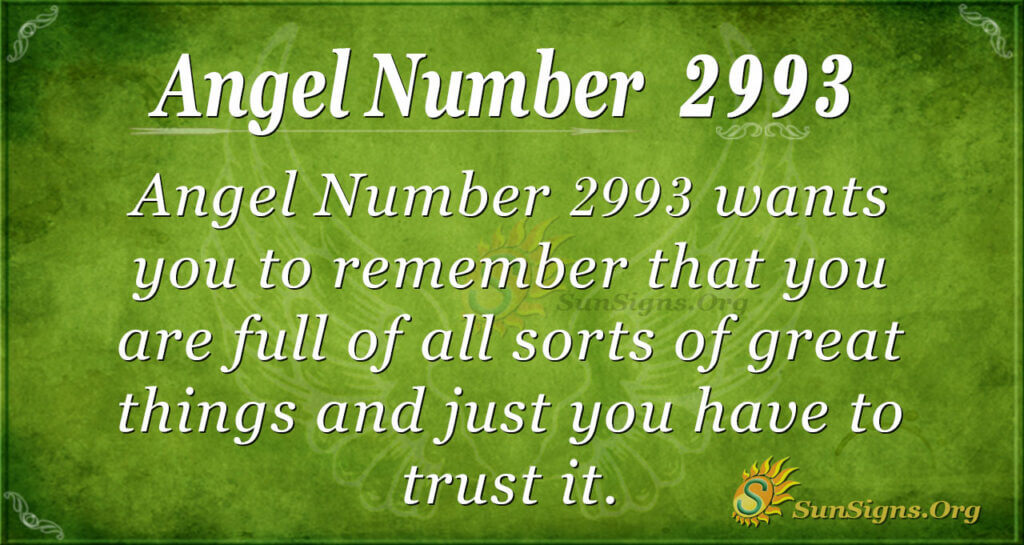 Angel Number 2993