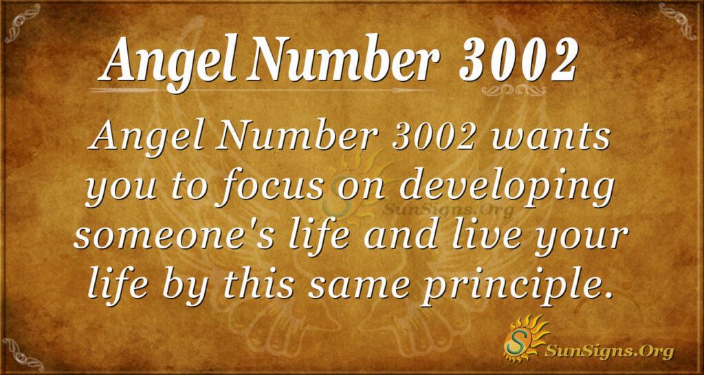 Angel number 3002