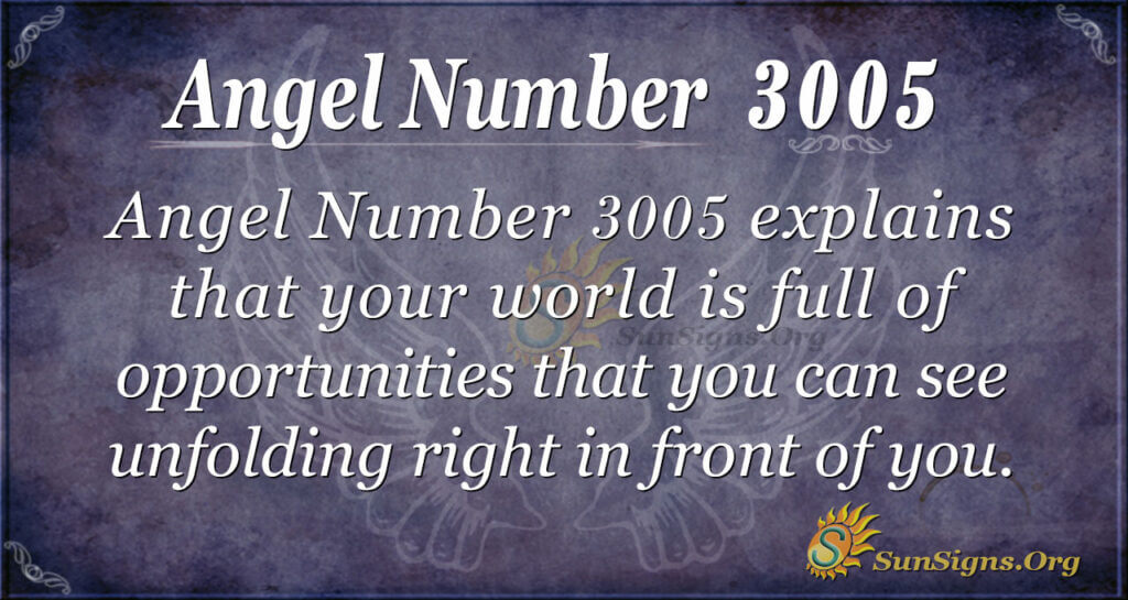 Angel Number2005