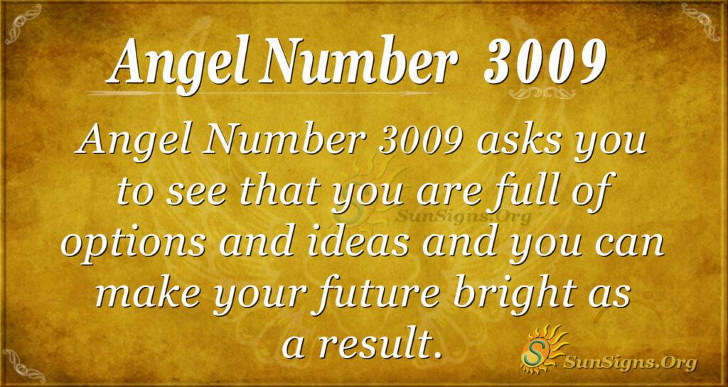 Angel Number 3009