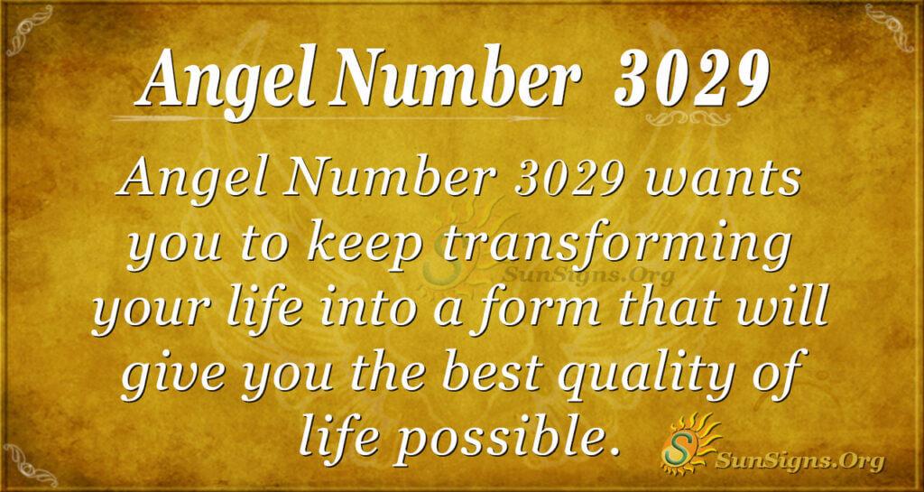 Angel Number 3029