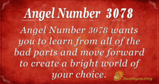 Angel Number 3078